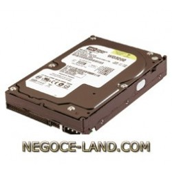 disque-dur-35-ide-401-gb-western-digital-wd-negoce-land