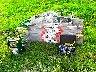 Monte tuiles Haemmerlin Maxial charge matériaux lève 150Kg [Petites annonces Negoce-Land.com]