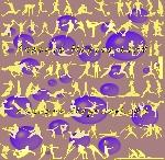 Lot de chaussures, baskets, tennis sport Neufs offre Sport [Petites annonces Negoce-Land.com]