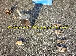 Sablon pour enduire ou crépir un mur ou muret offre Outils - Matériaux [Petites annonces Negoce-Land.com]